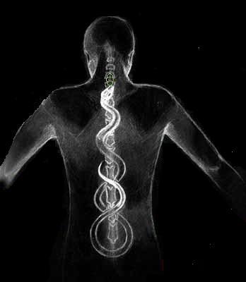 The Kundalini serpent